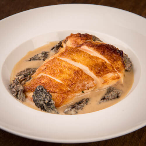 Organic French Chicken Suprême with Morel sauce 3/4 pers