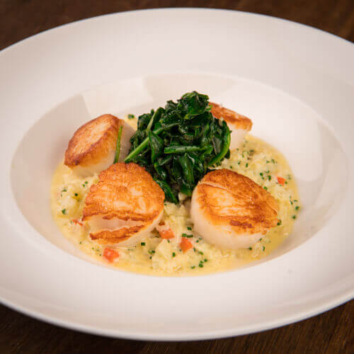 Scallops with cauliflower couscous with baby spinach